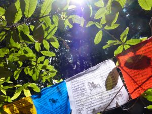 Close prayer flags